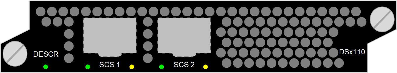 Bulk Descrambler DSx110, 2000 services / 6 Gbit/s, DVB-CSA v1 (48-bit), DVB-CSA v2 (64-bit), AES (128-bit)